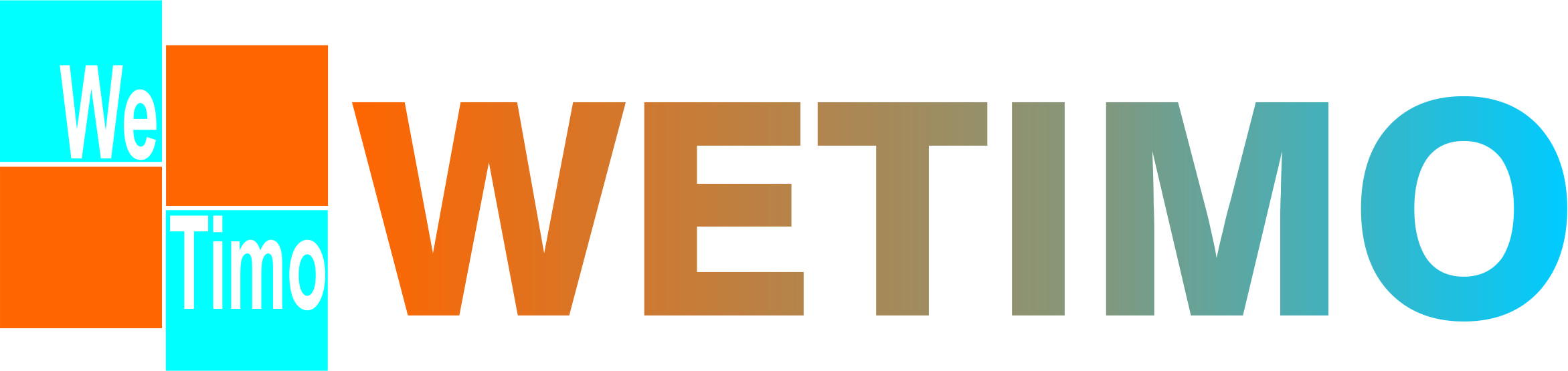 WebTimo-Logo